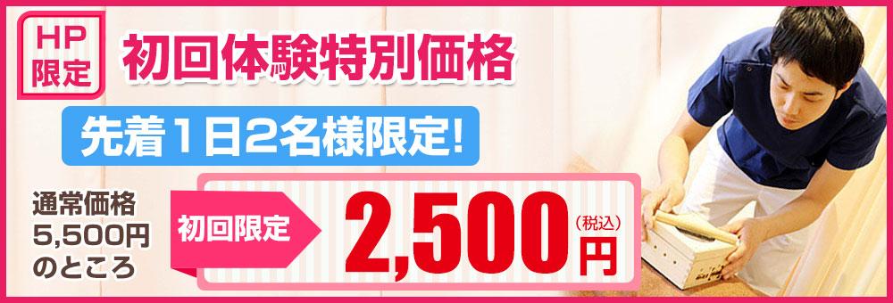 初回限定特別価格2500円